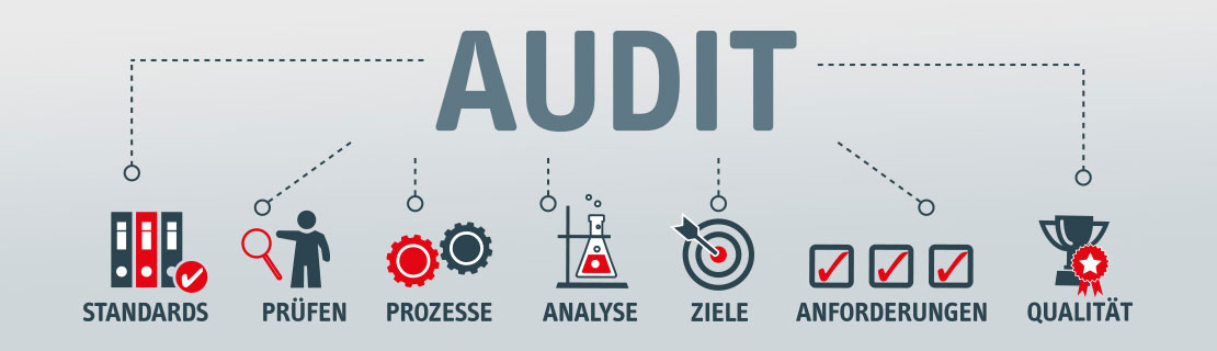 TOP-Qualität Audit, Standards, Analysen